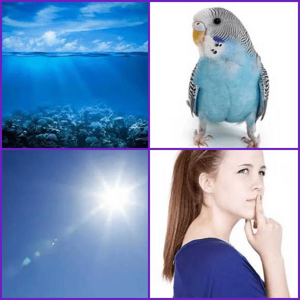 4 Pics 1 Word –  BLUE answer
