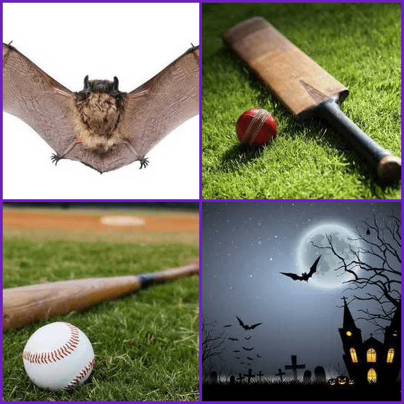 4 Pics 1 Word –  BAT answer