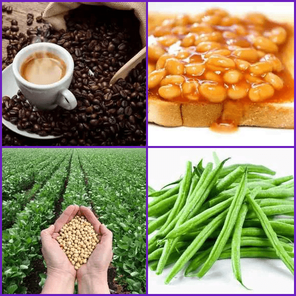4 Pics 1 Word –  BEANS answer