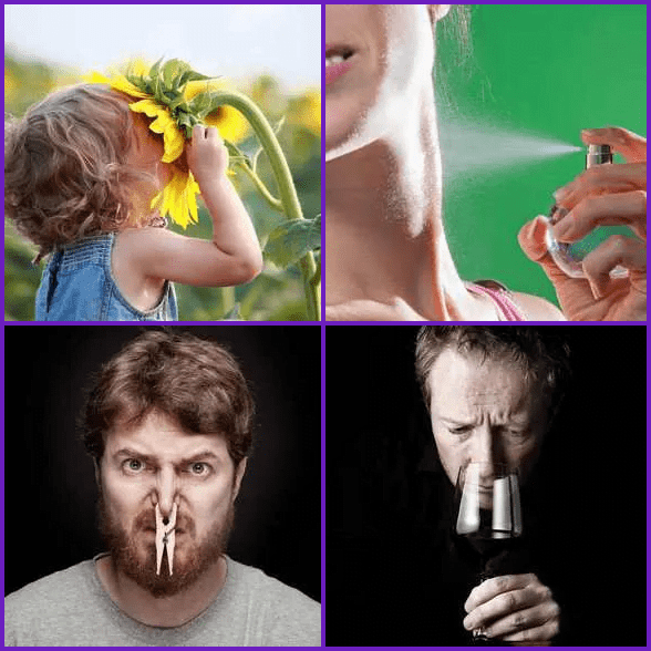 4 Pics 1 Word –  SMELL answer