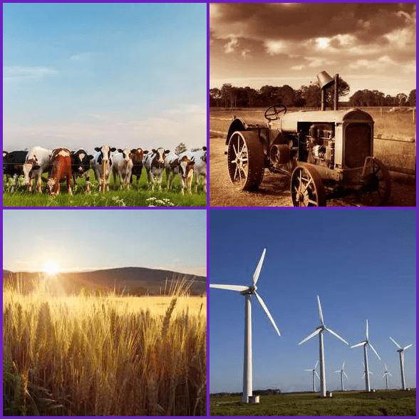 4 Pics 1 Word –  FARM answer