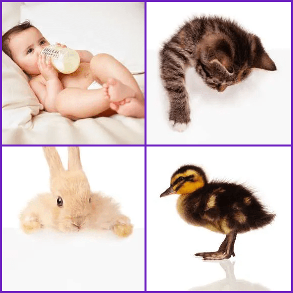 4 Pics 1 Word –  BABY answer