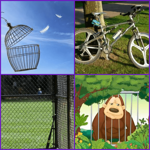 4 Pics 1 Word –  CAGE answer