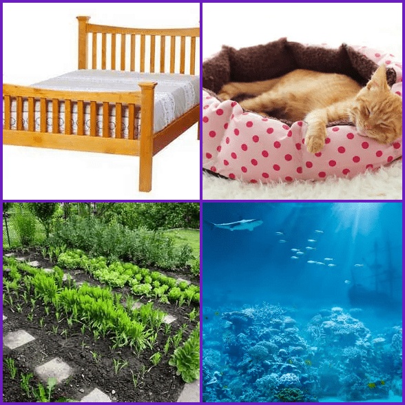 4 Pics 1 Word –  BED answer