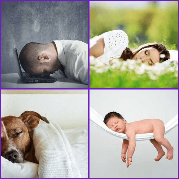 4 Pics 1 Word –  SLEEP answer