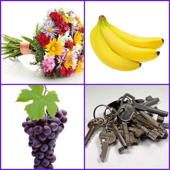 4 Pics 1 Word –  BUNCH answer
