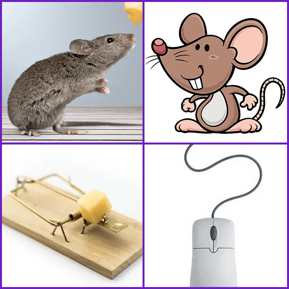 4 Pics 1 Word –  MOUSE answer